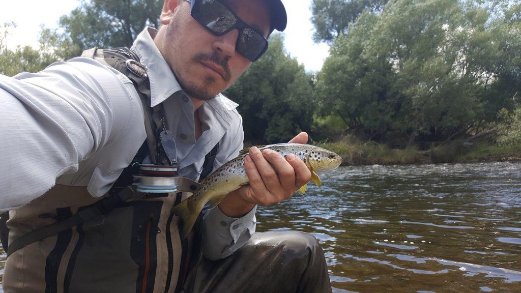 dusan-trout